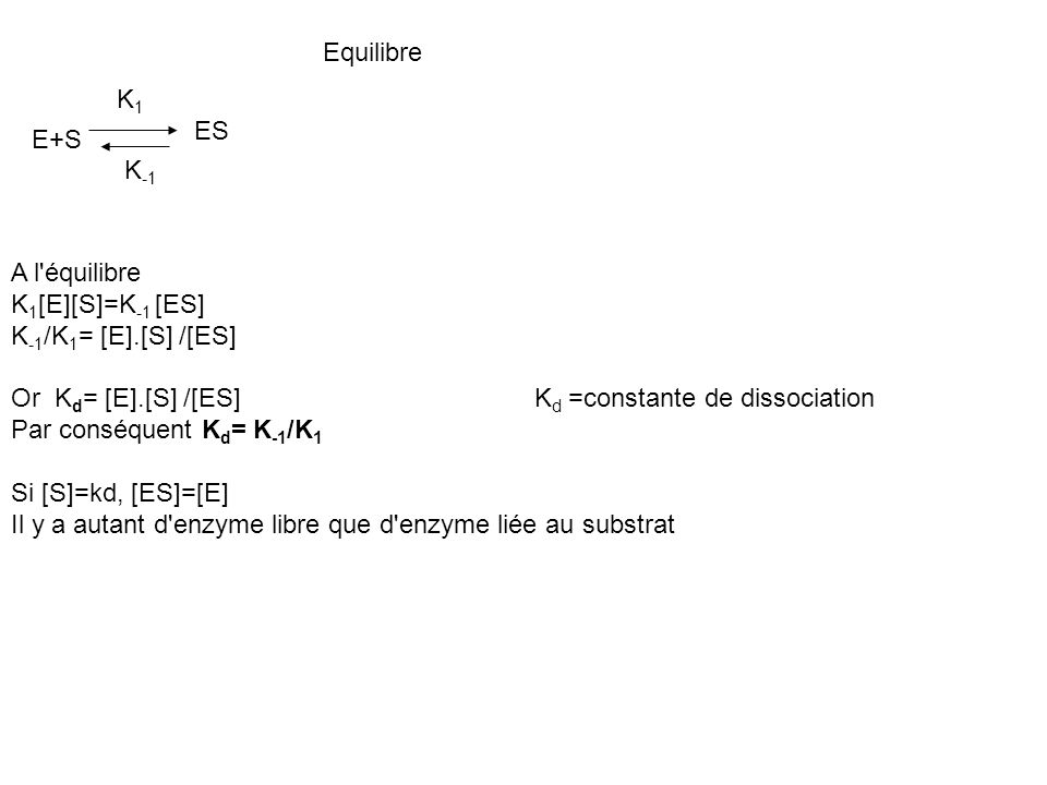 Equilibre K1. ES. E+S. K-1. A l équilibre. K1[E][S]=K-1 [ES] K-1/K1= [E].[S] /[ES] Or Kd= [E].[S] /[ES] Kd =constante de dissociation.